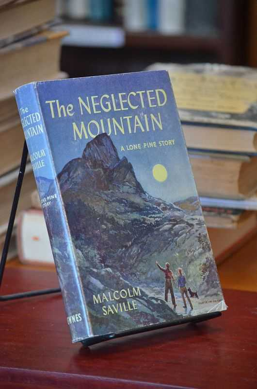 Image for The Neglected Mountain